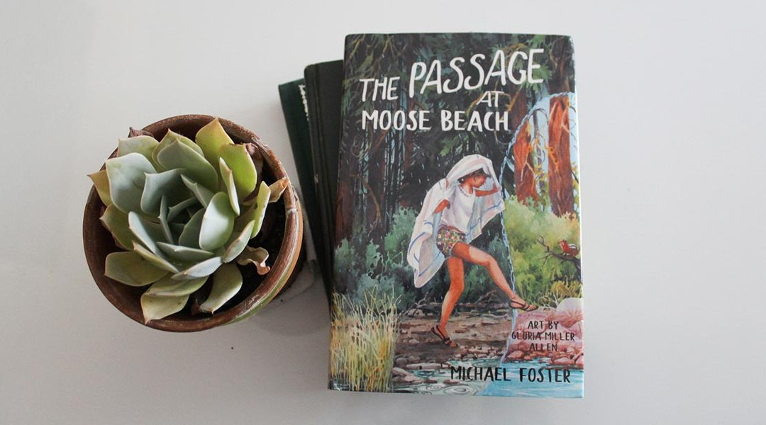 "Press Release: New Book Just Released in Time for Christmas; ""The Passage at Moose Beach"" by Michael Foster is a Great Gift for Young Teenagers"